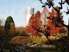 Bonn, Rheinauenpark, Herbst