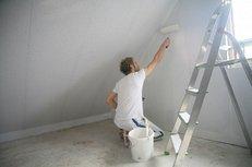 Maler, Farbe, Leiter