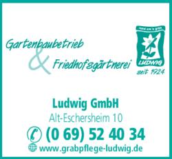 Anzeige Ludwig Heinrich GmbH