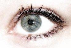 Augenklinik, Auge, Sehen