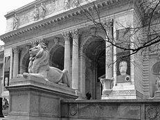Bibliothek, New York, Portal