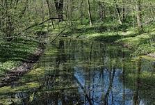 Botanischer Garten Blankenfelde-Mahlow, Spazieren Blankenfelde-Mahlow