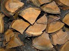 Brennholz, Feuer, Kamin