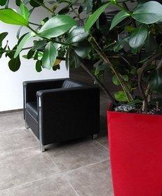Fliesen, Fliesenleger, Fussboden, Sessel, Topfpflanze