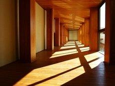 Holz, Flur, modern, Schatten, Säulen