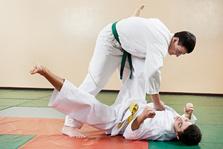 Kampfsportarten, Kampfschule, Capoeira,Taekwondo, Boxen