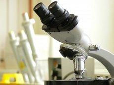 Mikroskop, Labor, technischer Laborbedarf