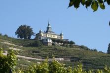 Spitzhaus, Sehenswürdigkeit, Weinberge