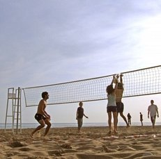 Strand, Netz, Volleyball