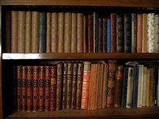 bibliothek, bildung, buch, regal