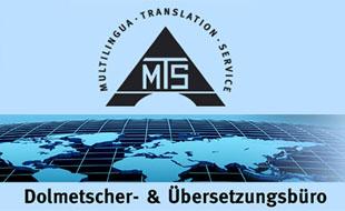Multilingua Translation Service