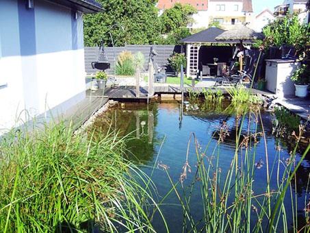 Gartenteichbau u. -gestaltung Helmut David GmbH
