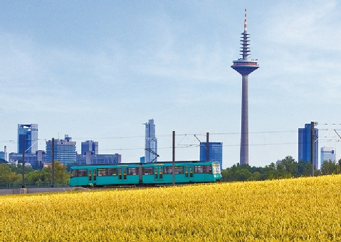 Logo von Verkehrsgesellschaft Frankfurt am Main mbH