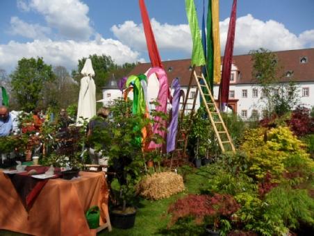 Pflanzenmrkt