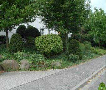 david capan garten landschaftsbau gmbh co kg in mainz mitte mit adresse und telefonnummer. Black Bedroom Furniture Sets. Home Design Ideas