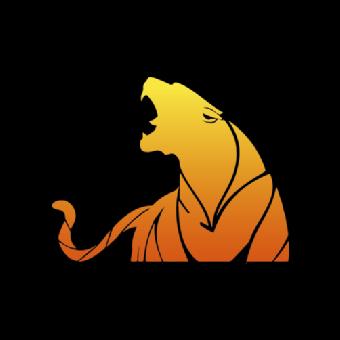 Traffic Tiger