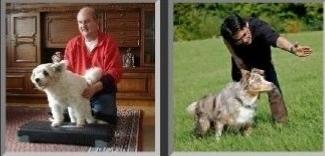 Rund um Ihren Hund Jost Wunner