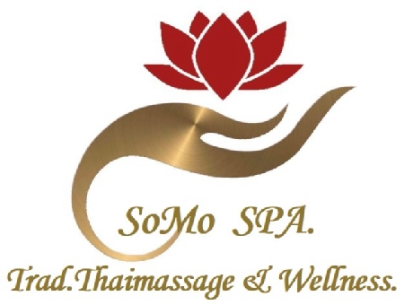 Logo von Somo Spa