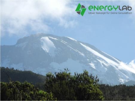 Logo von energylab