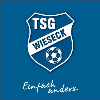Logo von SG Wieseck- JugendFörderzentrum