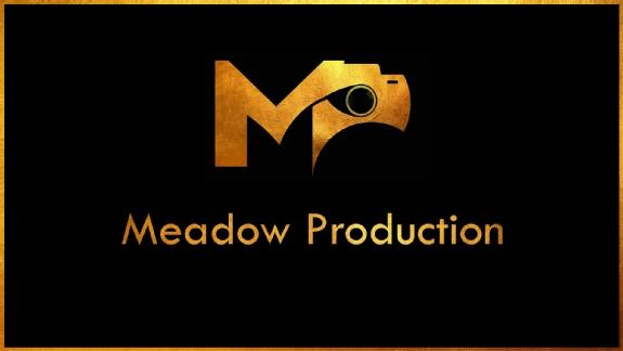 Logo von Meadow Production