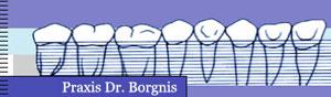 Borgnis