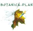 Botanica-Plan Malinowska Ewa Maria
